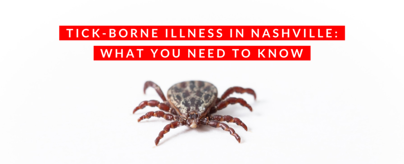 Tick-Borne Illness in Nashville: What You Need to Know